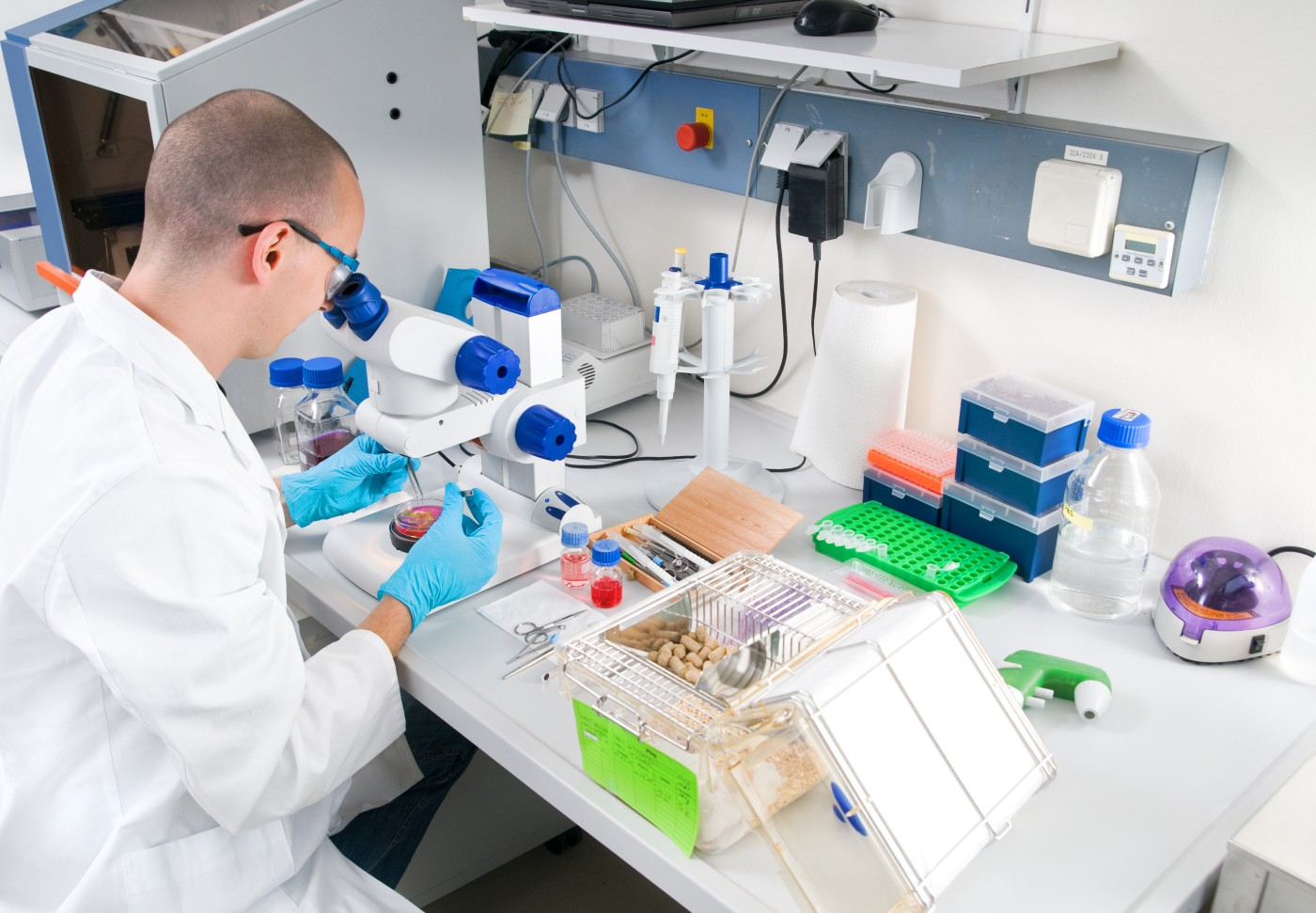 Project on Potential Therapeutic Drug Targets in Spinocerebellar Ataxia Receives Funding