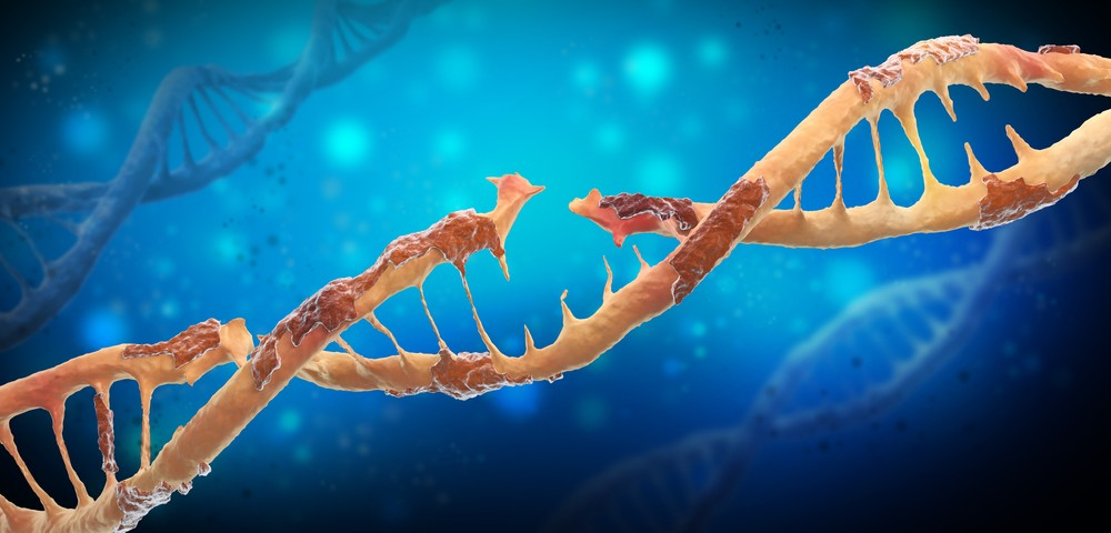 Loss of Frataxin Protein Leads to DNA Damage and Inflammation in Brain Cells, Researchers Say