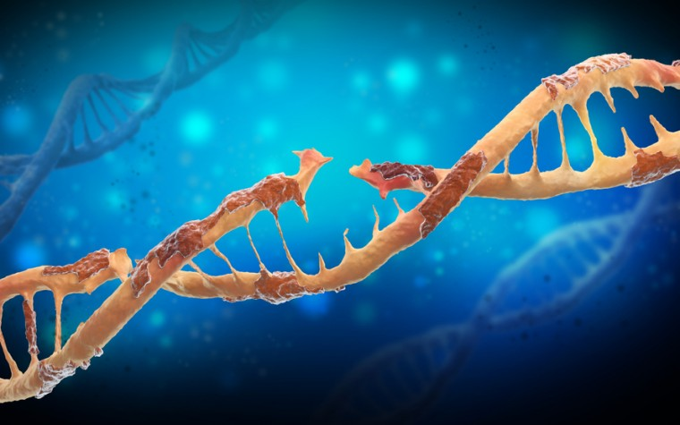 Friedreich's ataxia and gene therapy