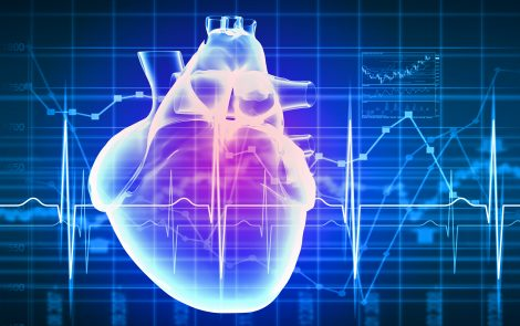 Low Levels of Nrf2 Protein Play Role in Friedreich's Ataxia Heart Damage, Study Finds