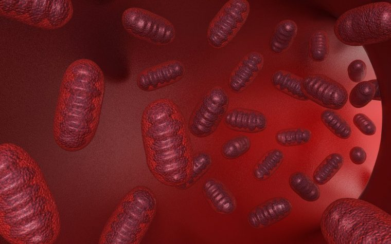 Measuring Mitochondrial Capacity in Friedreich's Ataxia May Offer Monitoring Possibilities