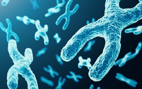 HDAC Inhibitors a Promising Treatment Option in Friedreich's Ataxia, Researchers Suggest