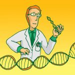 DNA rearrangement genetic instability
